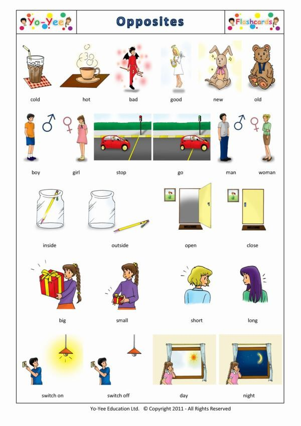 opposites and adjective flashcards for kids