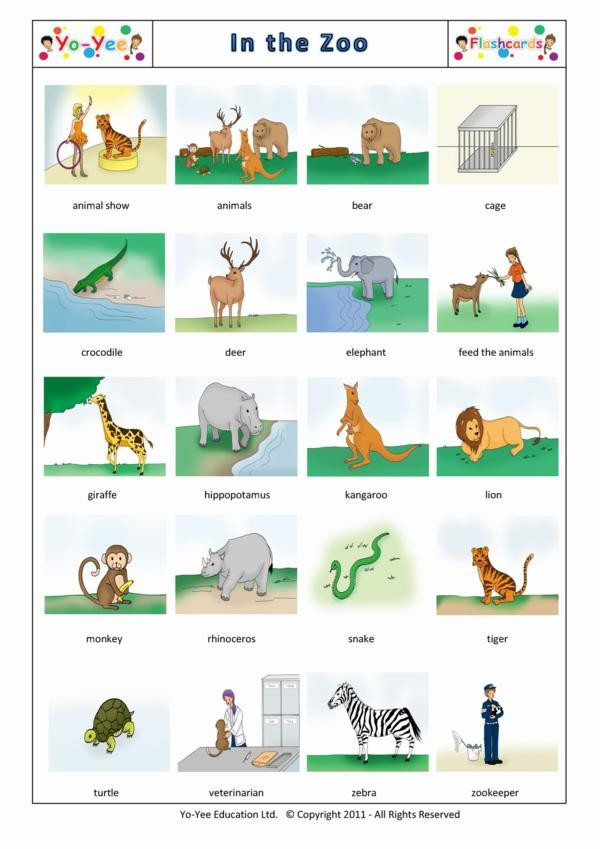 Animal and Zoo flashcards for kids | Au zoo