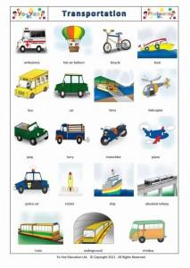 Die Transportmittel